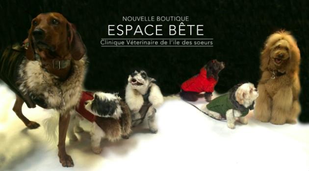 espace-bete-630x350