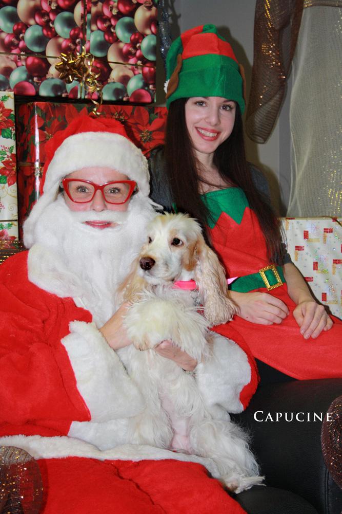 capucine-2