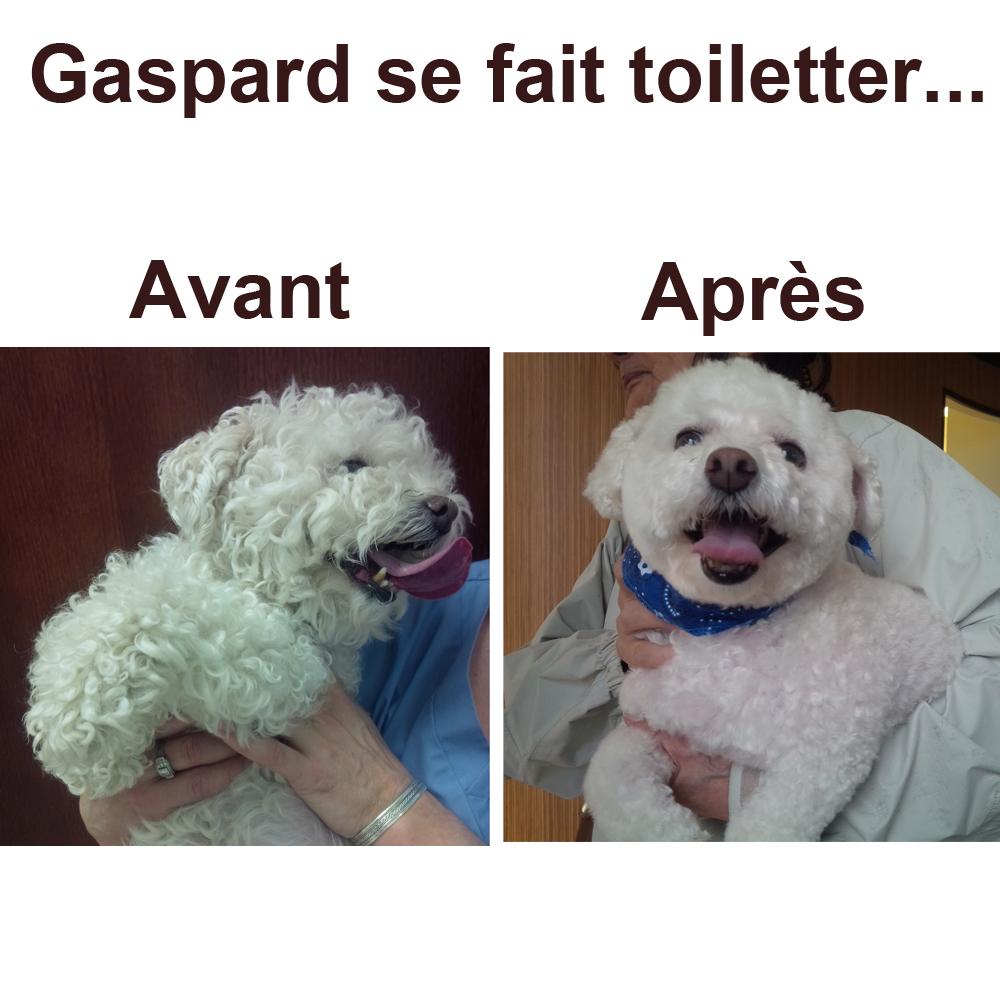 gaspard-avant-apres